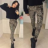 Лосины женские леопардовые, мод.641,Трикотаж с бархатным напылением ,Размер: 1(42-46), 2(48-52), 3(54-58), фото 2