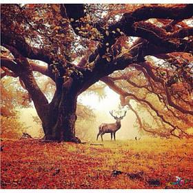 "Алмазна мозаїка ""Древо життя"", 30*40 см, з рамкою, в кор. 41*31*2,5 см"