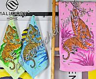 Махровое кухонное полотенце Два тигра (12)