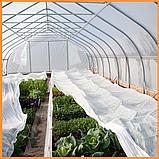 Агроволокно пакетированное 19 г/м² белое 1.6х5 метров, фото 7