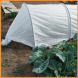 Агроволокно пакетированное 19 г/м² белое 1.6х5 метров, фото 8