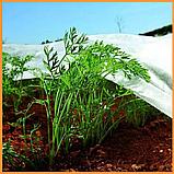 Агроволокно пакетоване 19 г/м2 біле 3.2х10 метрів, фото 5
