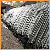 Пленка 80 мкм черная 3*100 м для мульчирования и строительства, фото 5