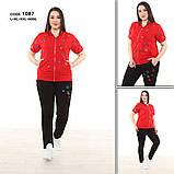 Женский брендовый спортивный трикотажный костюм, (Турция ); Размеры: 50,52,54,56 ;3 цвета, фото 2