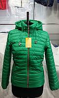 Демисезонная куртка для женщин Д2