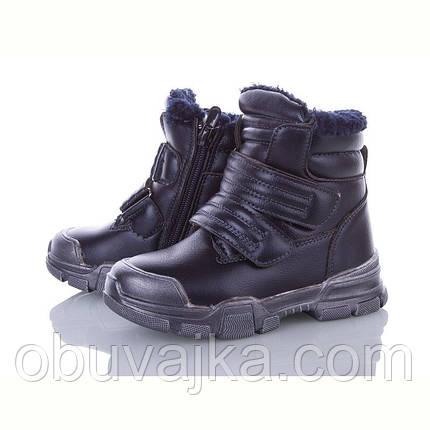Зимове взуття оптом Зимові черевики для дівчаток 2020 від фірми BBT(27-32), фото 2