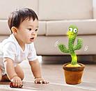 Интерактивная игрушка говорящий танцующий Кактус повторюшка, фото 3