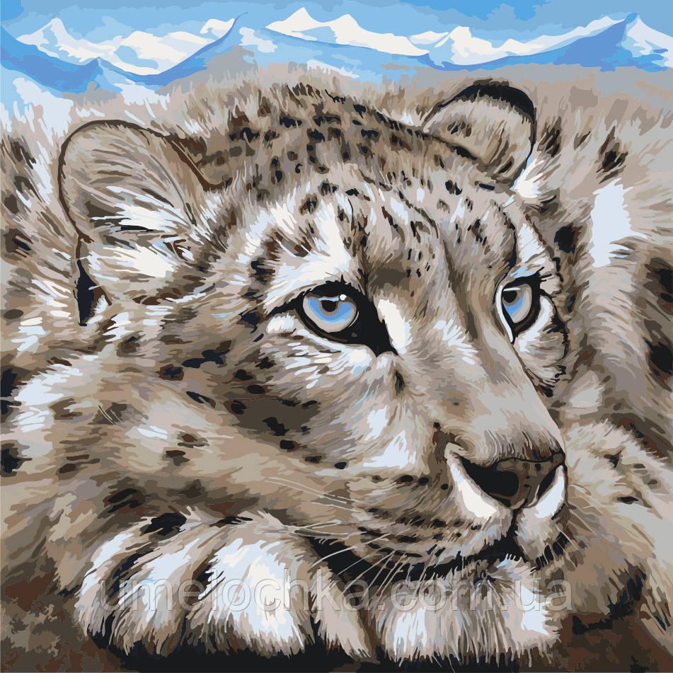 Картина по номерам без коробки Идейка Снежный барс (KHO2467) 40 х 40 см