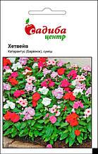 Катарантус (барвинок) Хетвейв Смесь 20 семян