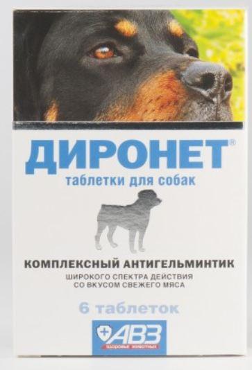 Диронет для собак №6
