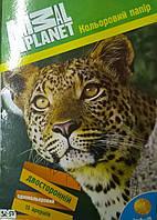 """Набор цветной бумаги """"Animal Planet"""" для детского творчества 15 листов А4"""