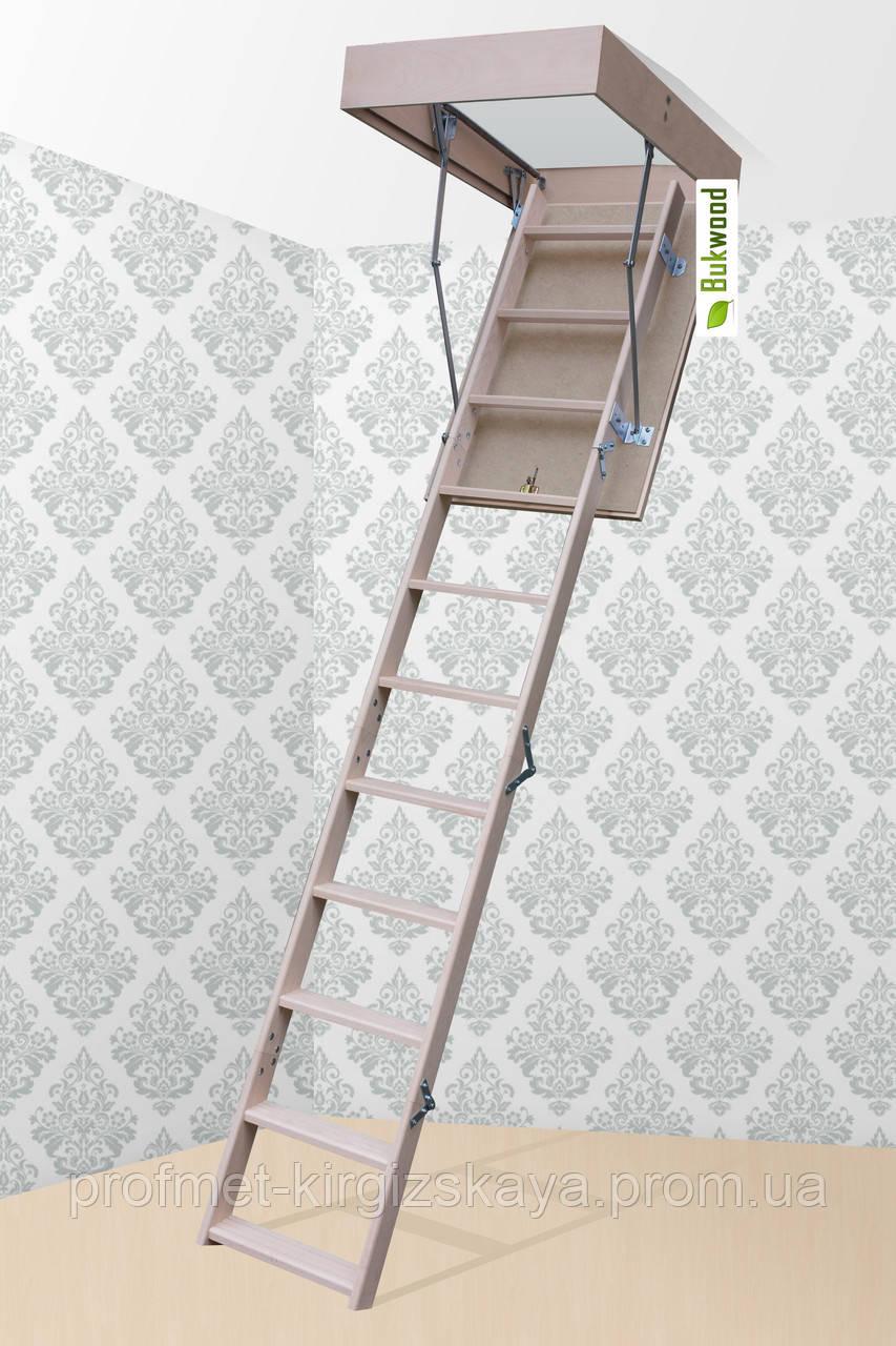 Чердачная лестница Bukwood ECO Mini