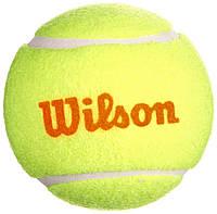 Мячи теннисные Wilson Starter Play Orange 3 Ball (WRT137300), фото 1