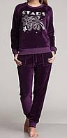 Женский комплект регланом велюровый фиолетовый