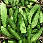 Гель з екстрактом огіркового соку Tony Moly Magic Food Cucumber Water Gel, 250 мл, фото 2