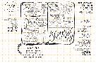 Дудл бук. 10 простых шагов к искусству визуализации (темный) (рус. язык), фото 7