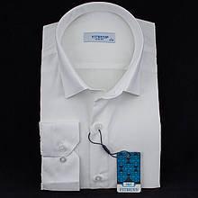Сорочка чоловіча, приталена (Slim Fit), з довгим рукавом FITMENS/PASHAMEN E.KSR/B Шампань 80% бавовна 20%