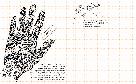 Дудлбук. Ok, Doodle. Дудлы, скетчи, зентаглы (рус. язык), фото 7