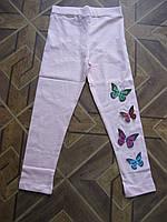 Лосины с бабочками для девочек 5 -8 лет Турция хлопок