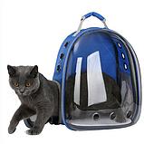 Рюкзак для перенесення тварин прозорий, фото 8