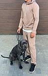 Мужской спортивный костюм двойка кофта батник и штаны двухнить размер: M, L, XL, XXL, фото 4