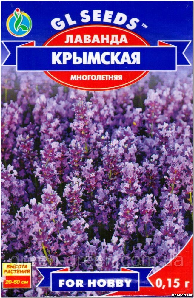 Лаванда Крымская