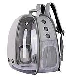 Рюкзак для перенесення тварин прозорий, фото 9