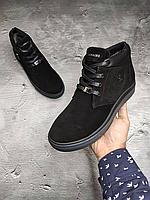 Чёрные замшевые мужские зимние ботинки Billionaire   натуральная замша/натуральная шерсть + термополиуретан