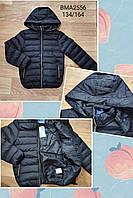 Стьобані куртки для хлопчиків Glo-Story 134-164 р. р, фото 1