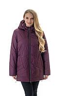 Стильна жіноча куртка великих розмірів з капюшоном кольору марсала , розмір 52-70, фото 1