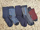 Якісні щільні підліткові бавовняні шкарпетки від tcm Tchibo (чібо), Німеччина, розмір 35-38, фото 3