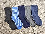 Якісні щільні підліткові бавовняні шкарпетки від tcm Tchibo (чібо), Німеччина, розмір 35-38, фото 7