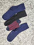 Якісні щільні підліткові бавовняні шкарпетки від tcm Tchibo (чібо), Німеччина, розмір 35-38, фото 8