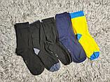 Якісні щільні підліткові бавовняні шкарпетки від tcm Tchibo (чібо), Німеччина, розмір 35-38, фото 9