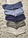 Якісні щільні підліткові бавовняні шкарпетки від tcm Tchibo (чібо), Німеччина, розмір 35-38, фото 2
