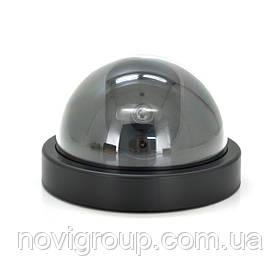 Муляж внутрішньої камери DUMMY BALL 6688