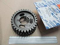 Шестерня привода топливного насоса ТНВД | Д-245 (245-1006311-В1)