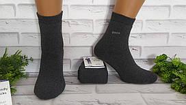 Носки мужские махровые  25-27 (37/40) 1 пару  Friendly Socks