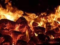 Виды топлива для твердотопливных котлов