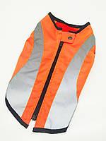 Жилет для собаки Сигнал 28х60+6см, Оранжевый ск2