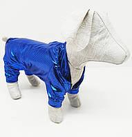 Комбинезон новогодний праздничный для собак Хамеллион Серый, 43х64 ск2