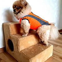 Ступеньки для собак с местом для жилья ск2