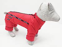 Комбинезон для собаки утепленный (флис) 38х64 мопс 2 ск2