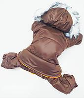 Костюм комбинезон для собаки Забава коричневый 38х66 мопс 2 ск2