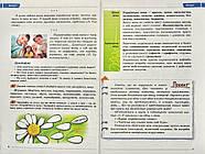 Українська мова. 6 клас. Підручник Заболотний О., фото 4