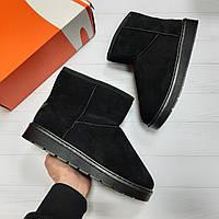 Ботинки мужские Ugg (Угги) black suede зимние из нубука реплика Размер 39,40,41