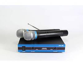 Радіосистема DM EW 100 2 мікрофони для караоке, фото 2