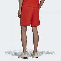 Шорти чоловічі adidas Originals Graphics Symbol H13515 2021/2, фото 3