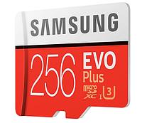 Карта пам'яті Micro SDXC 256GB Class10 Evo SAMSUNG Plus, фото 1