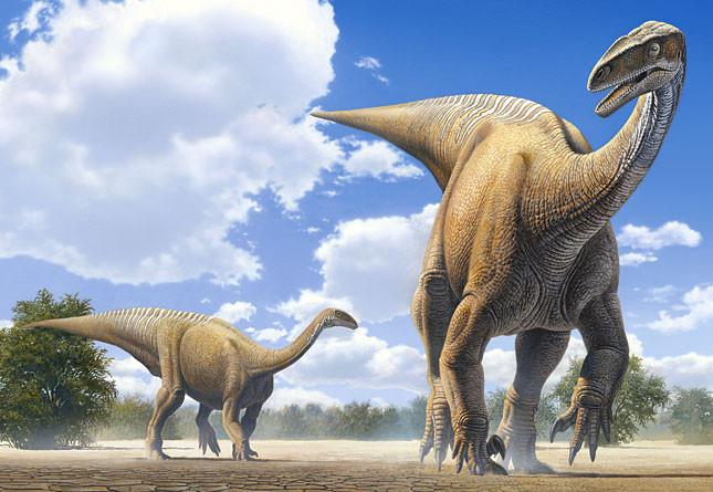 Пазлы 120 элементов Castorland 13050 Динозавры